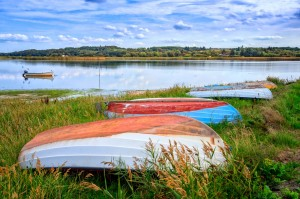 Dinghies-in-the-grass